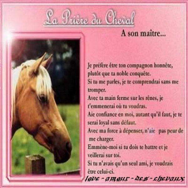 La prière du cheval: