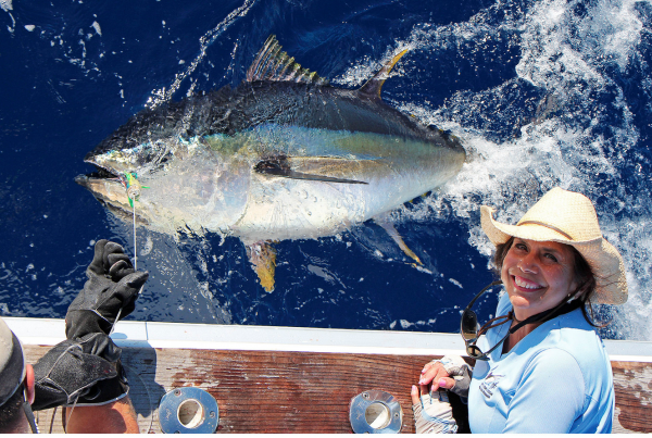 Report of the 4 august 2014 -------------------------------------- Nola's day, marco replace me for 4 days on Nola and amazing fishing. 1/8 whites, 0/1 blu, 3/5 bigeyes tuna 90KG to 130kg. Other boats , full of whites and tunas.