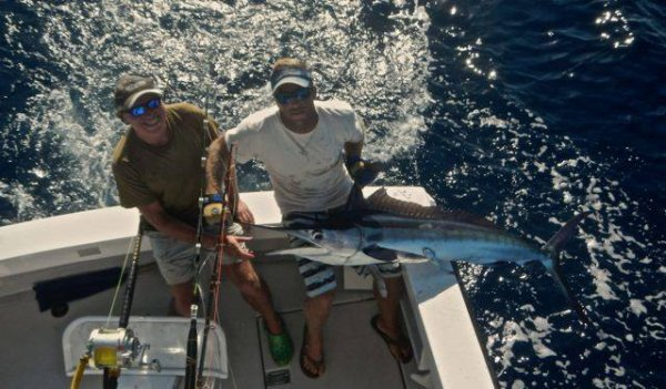Report of the 10 august 2014 ----------------------------------------- Very nice conditions todayon Azores bank but no activity. Xacara, Makaira, Brasilia, same result 2 white marlin for each. Nola and Brasilia 2 at work. We see tomorrow and hope more birds activity.