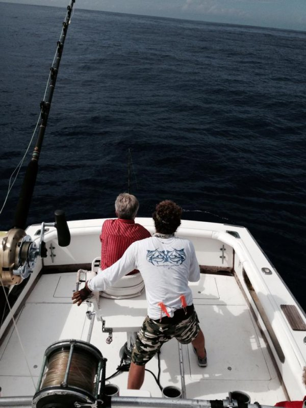 Report of the 2 september 2014. ------------------------------------------------- Today all boat on Condor bank and it's the small boats day. 6 blues marlins seen and 3 caught and released. Makaira: 1/2 700lbs released and 250lbs pull the hook at the swivel.Nice job of Hein and Henk Brasilia 2: 450lbs released good job out Birger first blue and crew. Habitat: 450lbs ,1/3. Tomorrow revenge of the big boats. Photo of Birger first time on the chair