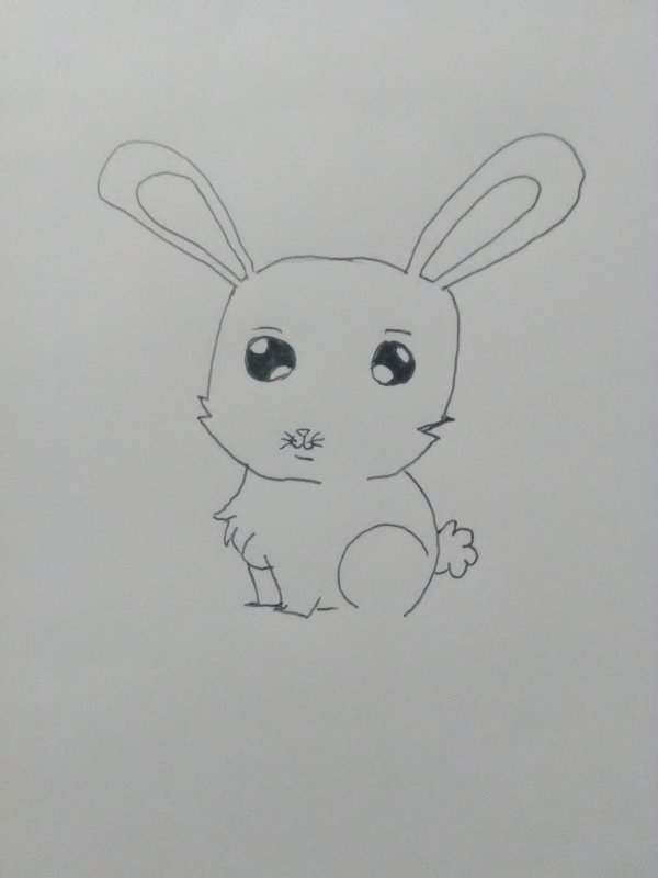 Dessin d'un petit lapin.