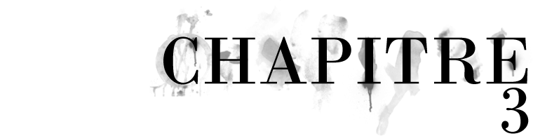 Lyaënidae — Chapitre 3