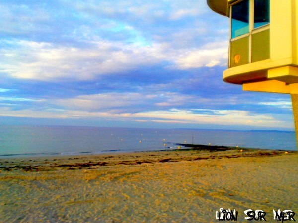 Liion Sur Mer