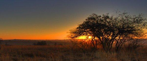 environs de Johannesburg