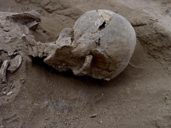 crâne d'un supplicié de Nataruk
