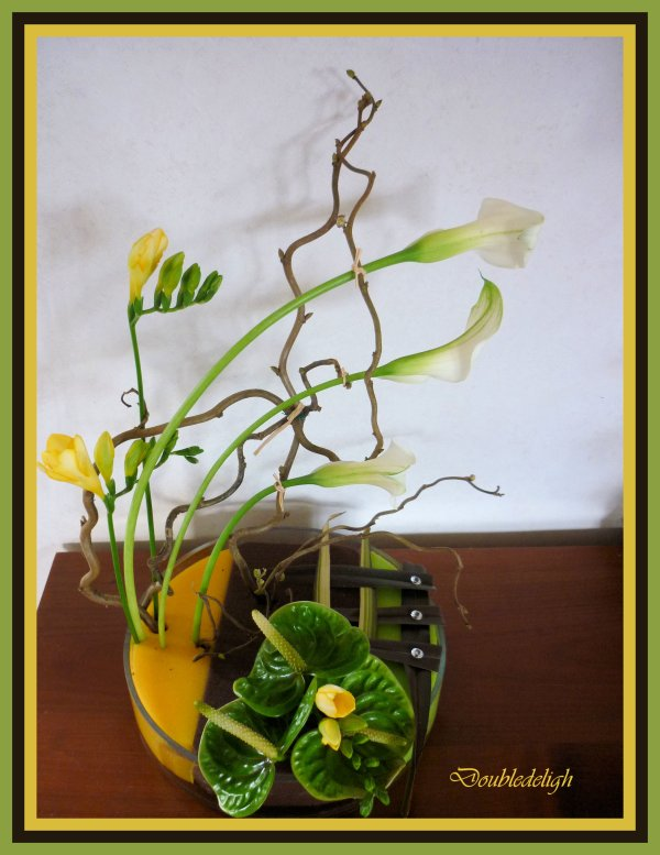 Calas, freesias et anthuriums