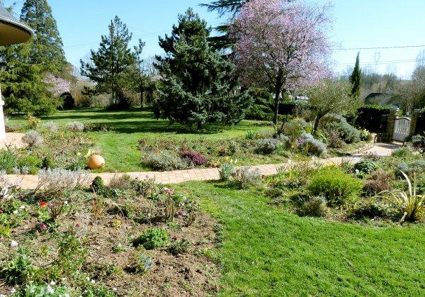 Le jardin se réveille .... sous le soleil !
