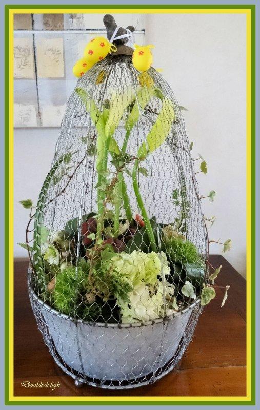 Arums en cage pour les fêtes pascales ....