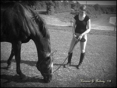 """Aime ton cheval plus que ta propre vie."""