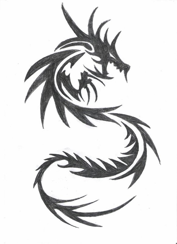 Dragon tribal aries - Dessin facile de dragon ...