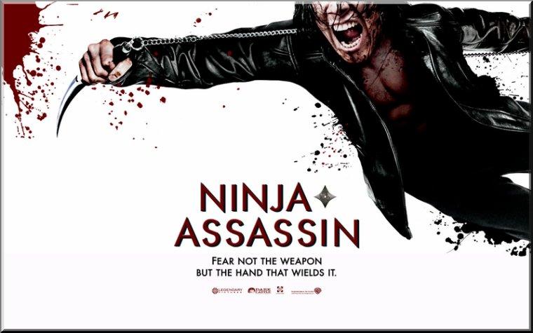 < Ninja Assassin >