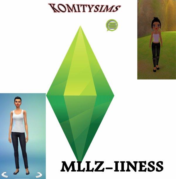 concours - komitysims-mllz iiness