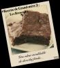 #Recette de Grand-mère 2 : Brownie