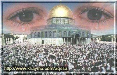 طفل يعرب كلمة فلسطين إعرابا تدمع له العين
