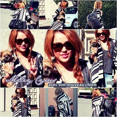 6.Fév.11  Miley avec son nouveau chien !