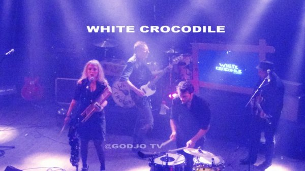 TRANSMISSION / WHITE CROCODILE (rock)
