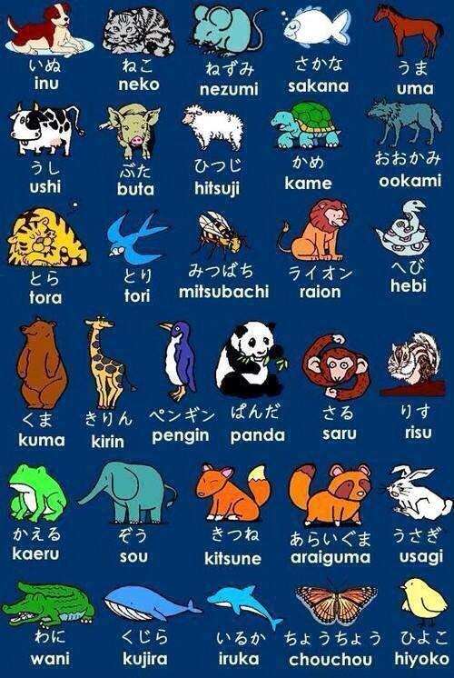 Les animaux en Japonais