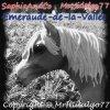Emeraude-de-la-Vallee