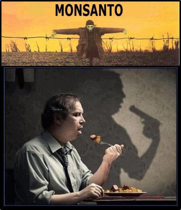 Le monde selon Monsanto (cliquez sur le lien sous l'image et bon ap'!!)