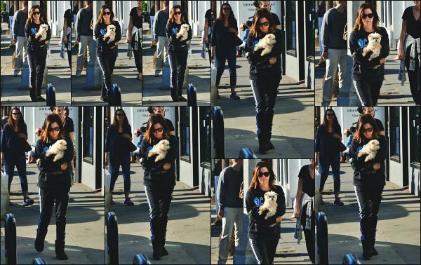 19.12.17 ─ Ashley Tisdale a été photographiée alors qu'elle arrivait au « Kelley Baker Explore » dans Venice BeachC'est en compagnie de son chien, Maui, dans les bras que la belle A. est apparue ! Concernant sa tenue, c'est plutôt décontractée pour sortir, un mini-top