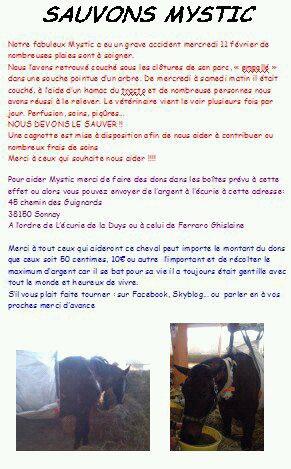 SOS cheval malade!!