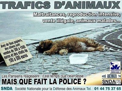 MAiS QUE FAiT LA POLiCE??!!?