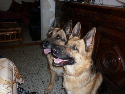 BRUCE & TINA ET LILOU