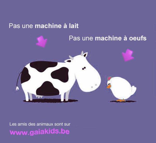 Ni L'un Si L'autre sont des machines :(
