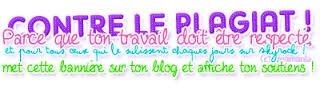 Bienvenue sur mon blog  ^o^