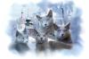 Les chats de la Christe Marine