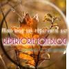 http://repertorie-ton-blog.skyrock.mobi/
