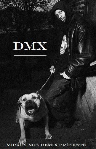 Remix DMX 100% Inédit (Téléchargement sur demande)