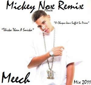 The Best Of Mixtape Vol°1 / Meech - Thicka Than A Snicka / A Chaque Jour Suffit Sa Peine (Remix By MickeyNox) (2011)