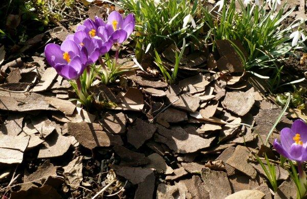 VENDREDI 9 MARS 2012
