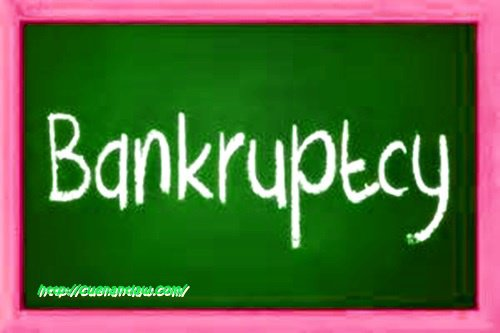 Learn Which Bankruptcy Works For You