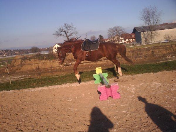 Ferme les yeux, Crois en Lui, Lache lui les rênes & dis lui Je T'aime  .i-loove-horsee.skyrock.com__©