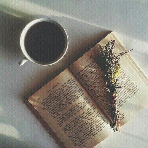 """""""Le papier est plus patient que les hommes."""" -Anne Frank"""
