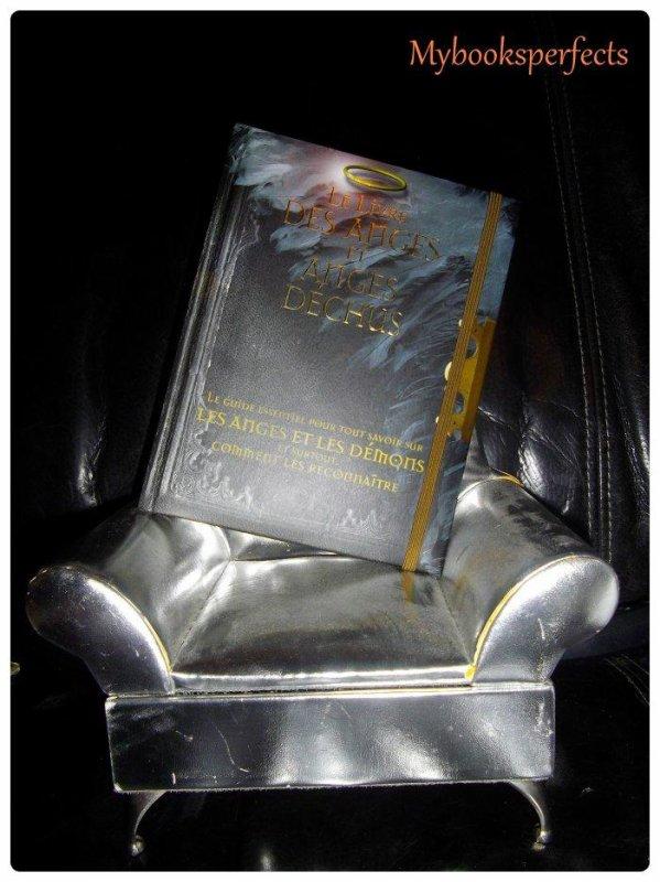 Le livre des anges et anges déchus - Robert Curran