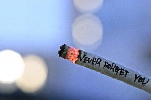 Une fille c'est un peu comme une cigarette. On l'allume parfois on la roule, on aime pas la partager, certains en ont toute l'année, d'autres galère a la trouver. On peux la taxer a quelqu'un ou on la jette quand on l'a bien tirée... Sauf que le jour où l'on devient trop dépendant c'est elle qui a le pouvoir