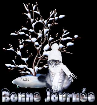 BON DIMANCHE 17 DECEMBRE 2017