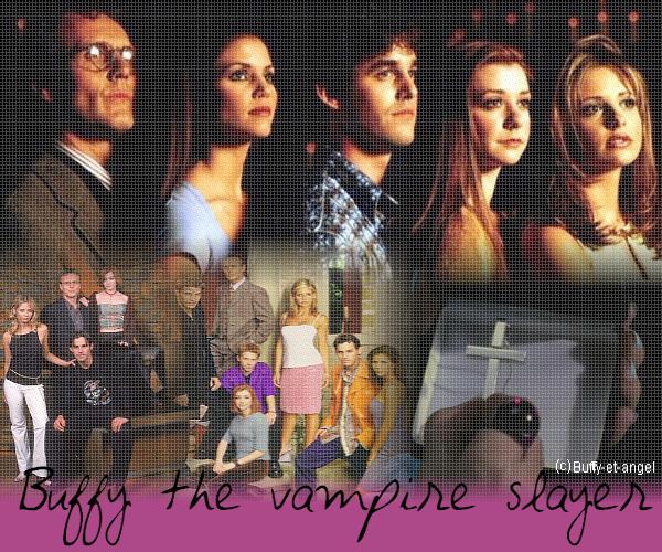 Synopsis de Buffy contre les vampires .