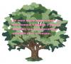 """Conhece-se as árvores pelos frutos"""