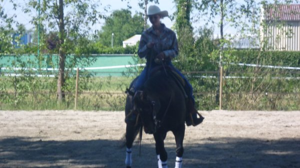 Lorsqu'on on arrive à un état où on donnerait plus que sa vie pour sa passion pour les chevaux..