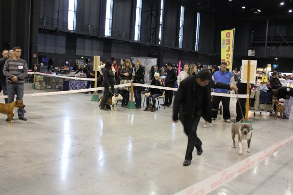EXPO CE WEEKEND