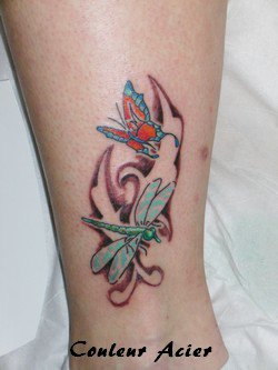 Libellulle et papillon