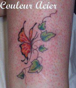 Papillon sur lierres