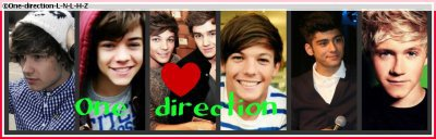 ~ One Band , One Dream , One Direction.