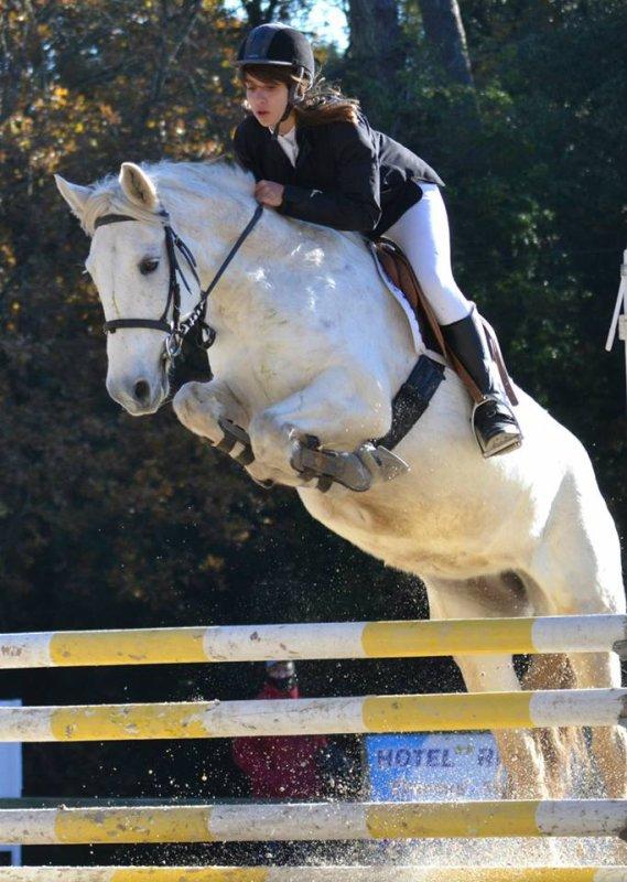 Concours saut d'obstacles Royan Ω