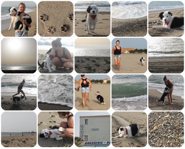 Nos vacances d'été à la mer