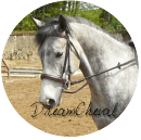 Photo de dreamcheval